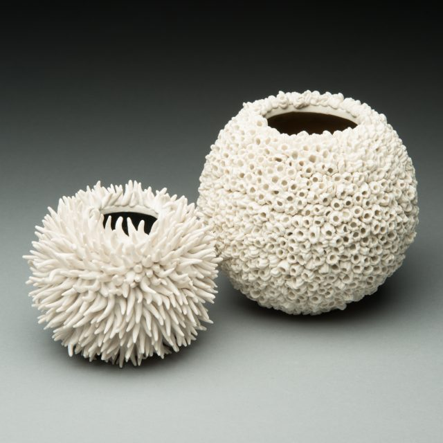 Urchin & Barnacle Puffball
